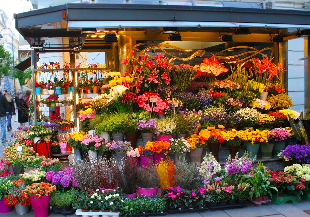 Доставка, заказать цветов по интернету лондоне